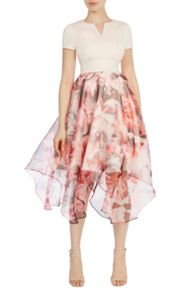 Coast Berlin print ciarra dress