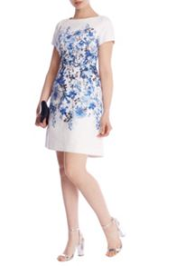 Coast Hudson Print Davvi Dress