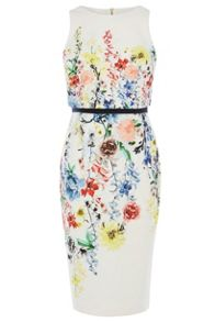 Coast Hudson Print Henley Dress