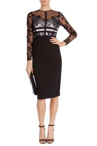 Coast Malinda Lace Shift Dress