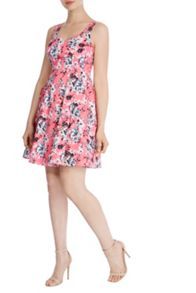 Coast Lecce Print Ada Cotton Dress