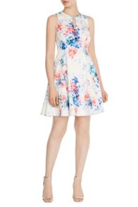 Coast Vilmoura Print Yasmin Dress