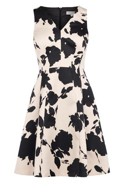 Coast Belise Print Kristen Dress