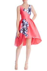 Coast Athens Print Ursula Dress
