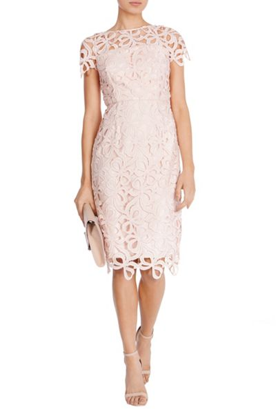 Coast Vanna Lace Dress Petite