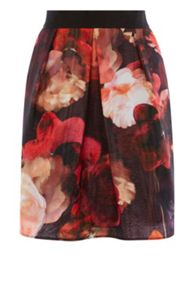 Coast Stacey Print A-Line Skirt