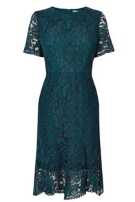 Coast Linera Lace Dress Shorter Length