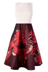 Coast Rose-Marie Jacquard Dress
