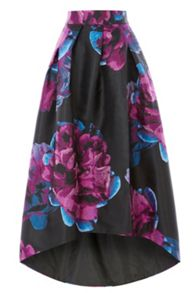Coast Exeter Jacquard Skirt