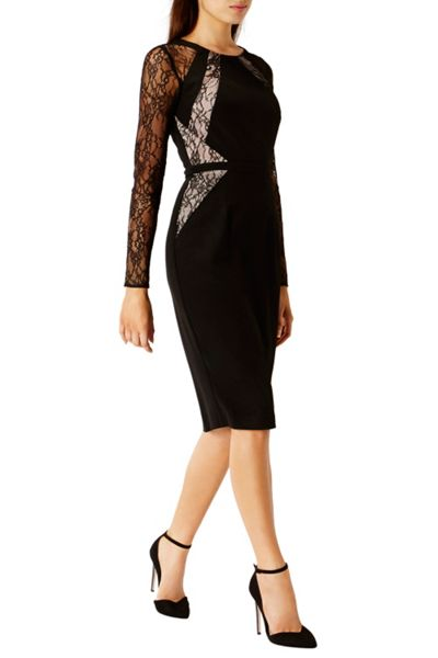 Coast Leonoria Lace Panel Dress