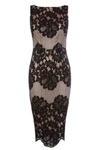 Coast Moiselle Lace Shift Dress