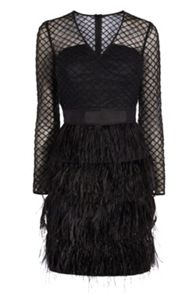 Coast Zaydee Feather Dress