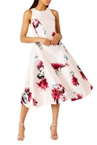 Coast Minerva Floral Dress
