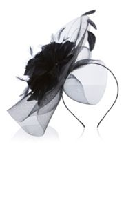 Coast Kalea Large Fascinator