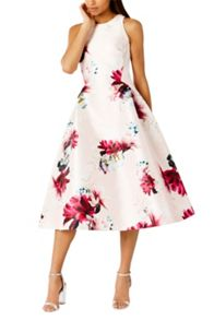 Coast Minerva Floral Dress Sl