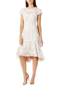 Coast Dee Dee Lace Dress Sl