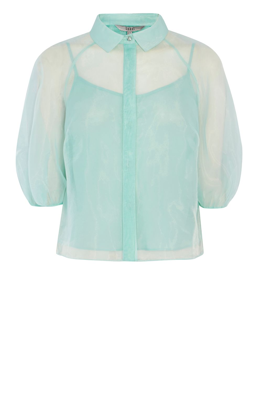 Coast Mya Organza Blouse, Mint