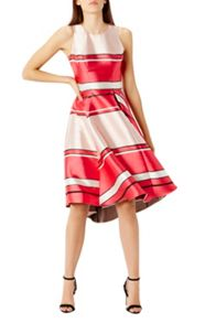 Coast Bayshore Stripe Dress Shorter Length