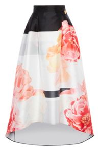 Coast Lottie Colour Block Skirt