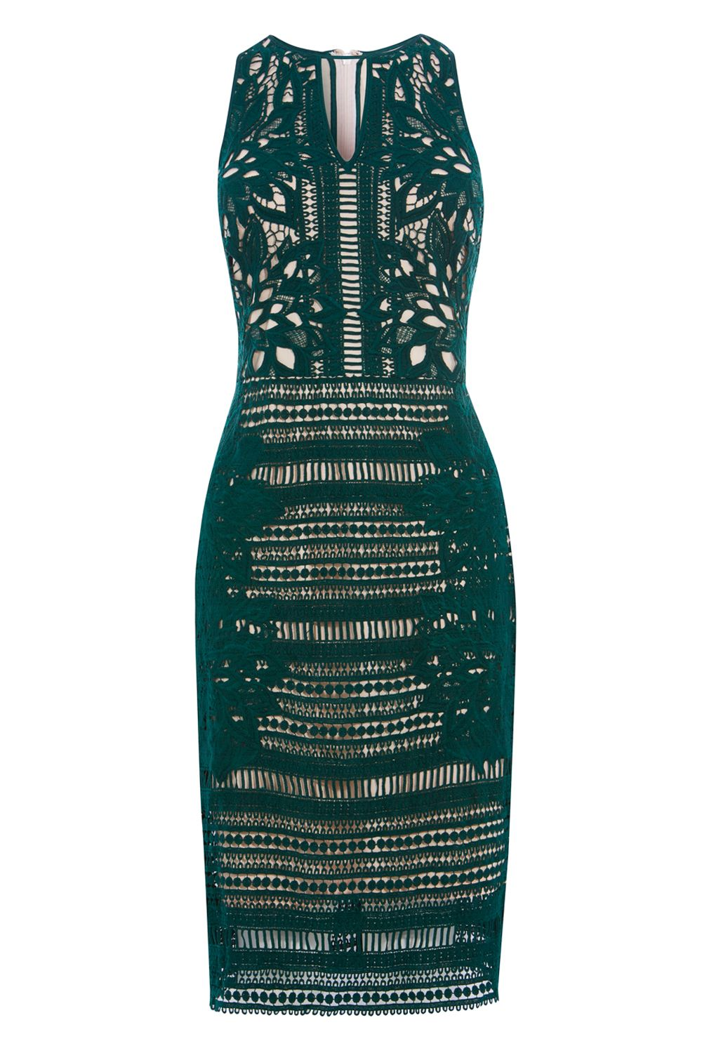 Coast Pamela Lace Shift Dress, Green