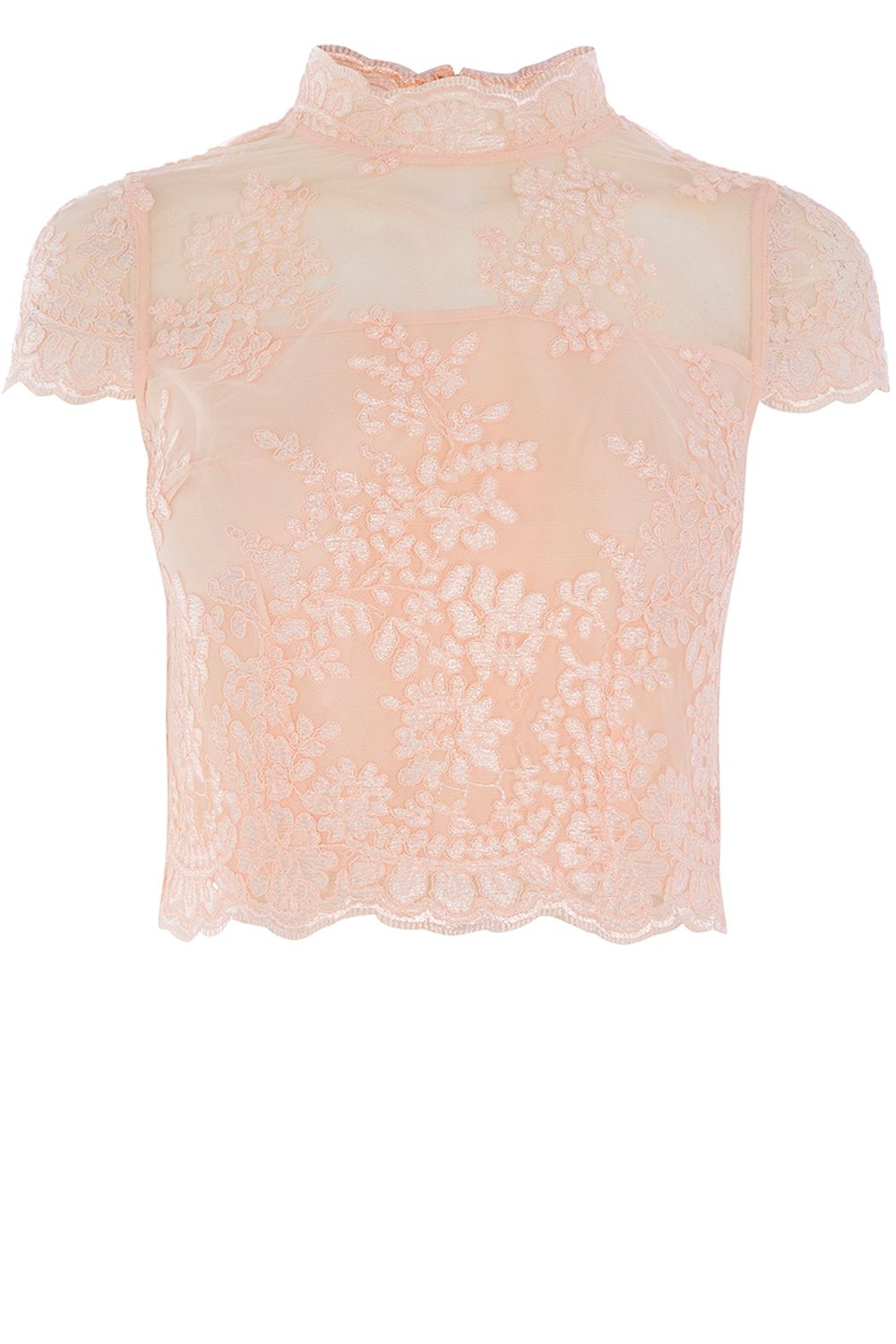 Coast Jen Lace Bridesmaid Top, Pink