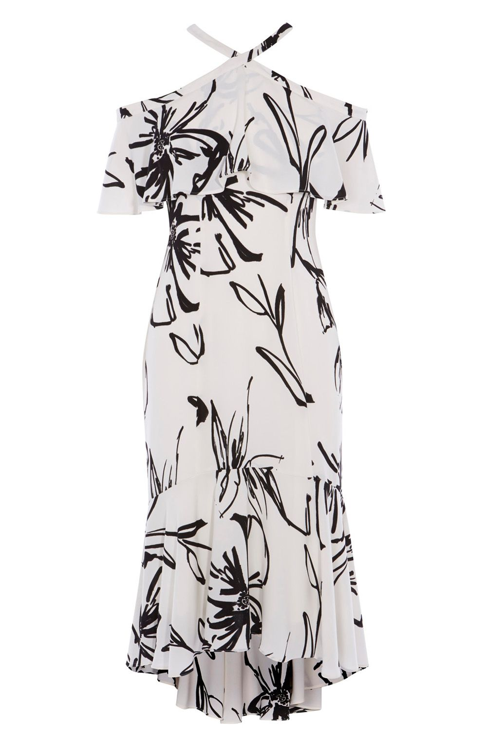 Coast Elouise Print Dress, MonoSilver