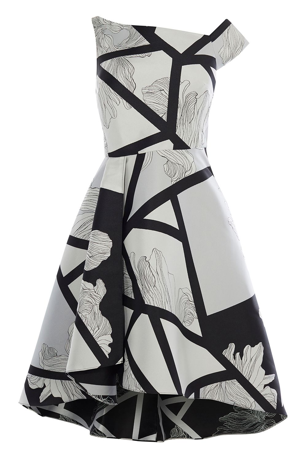 Coast Barton Print Full Midi Dress, MonoSilver