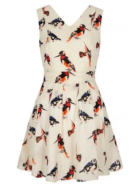 Yumi Bird Print Skater Dress
