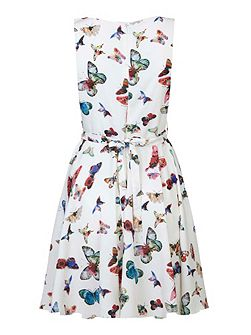 Multi Butterflies Skater Dress