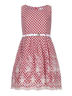 Girls Butterfly Print Lace Hem Day Dress