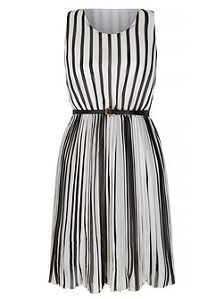 Stripe Print Pleated Dress