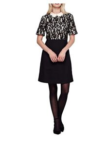 Yumi Lace Panel Collared Dress