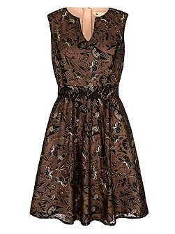 Gold Bird Printed Party Dress