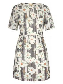 Yumi Daisy Print Shift Dress