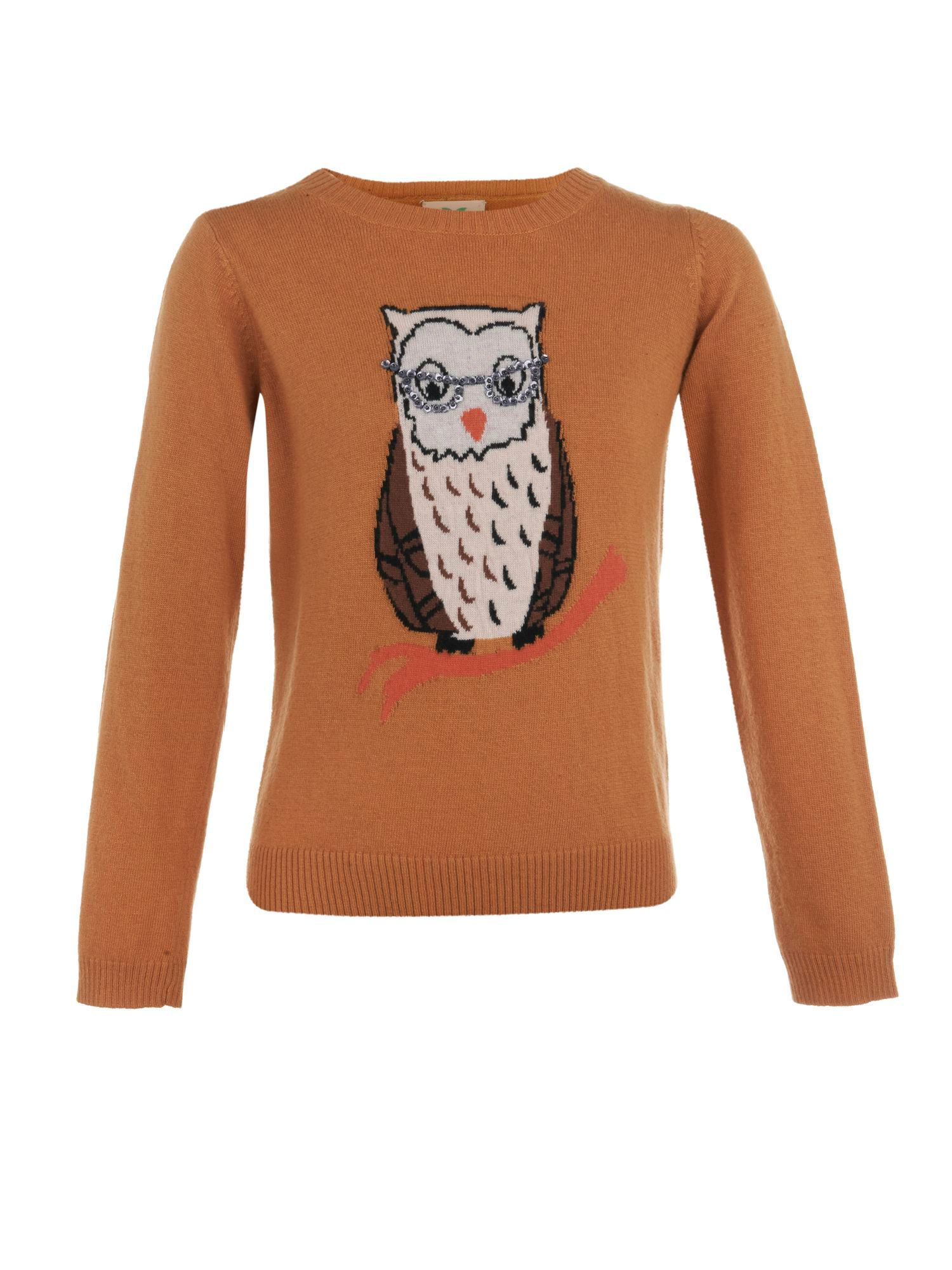 Girl`s owl knit jumper