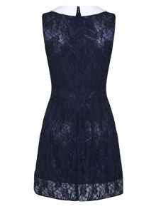 Lace Dress With Collar