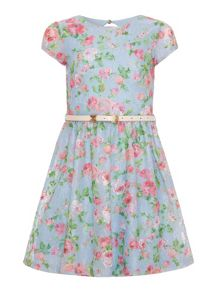 Girls floral printed lace dress