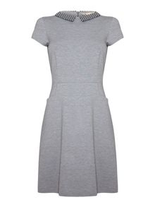 Collared Day Dress