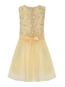 Embroidered bodice skater dress
