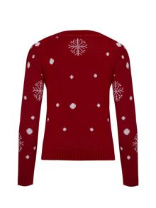 Girls christmas deer jumper
