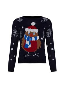 Girls christmas robin jumper
