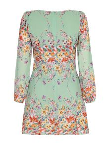 Butterfly and Floral Sleeved Tunic Dress