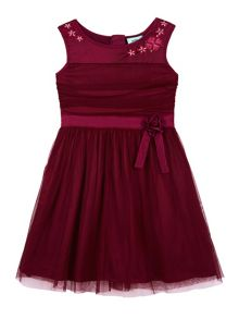 Mesh Rose Party Dress