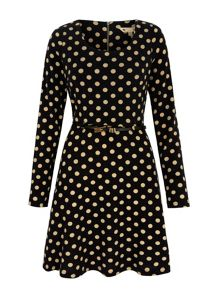 Polka Dot Print Skater Dress