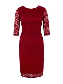 Lace Fitted Occasion Dress