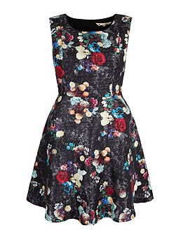 Winter Floral Print Dress