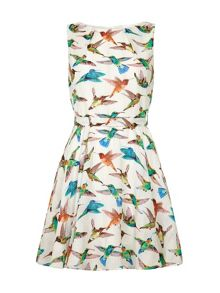 Mela London Bird Print Day Dress