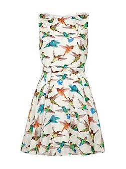 Bird Print Day Dress