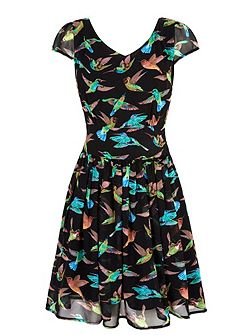 Hummingbird Print Day Dress