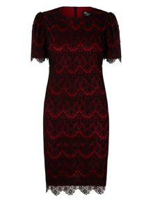Mela Loves London Lace Occasion Dress